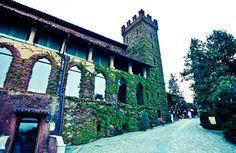 Castello dei Nove Merli nel Piossasco, Piemonte