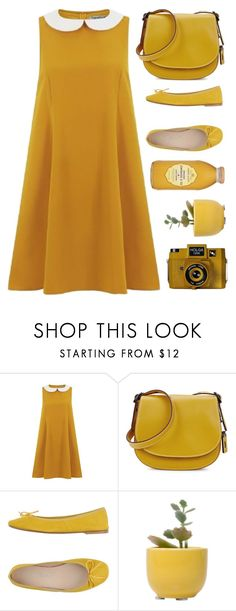 """""""Untitled #1957"""" by tinkertot ❤ liked on Polyvore featuring Coach 1941, Cantarelli, Dot & Bo and Holga"""