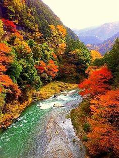#Japan #okutama