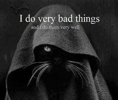 I find your lack of catnip disturbing...