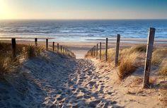 Vlies fotobehang Strand Noordzee - Strand behang | Muurmode.nl