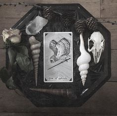 the pushes forward toward his goal with urgency and determination Wiccan, Magick, Witchcraft, Witch Shop, Tarot Astrology, Grunge, Horror, Witch Decor, Sea Witch