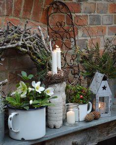 Likes, 106 Comments – AntjeMichaelis-Haegner,Germany ( … - Balkon Ideen Dekoration Farm Gardens, Small Gardens, Outdoor Gardens, Diy Garden Decor, Garden Art, Garden Decorations, Balcony Design, Balcony Garden, Winter Garden