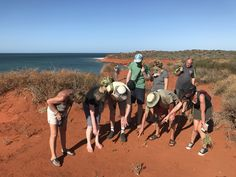 Looking at all the different animal tracks on the red sand at #francoisperonnationalpark