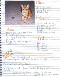 Writers' Notebooks - this blog post is full of great pages and ideas!