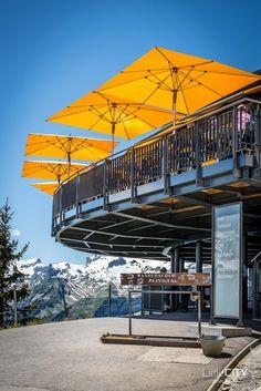 Schynige Platte Wanderung Jungfrau Bahnen LittleCITY-29 Lausanne, Places, Travel, Wedding Locations, Camper, Style, Swiss Guard, Viajes, Pictures
