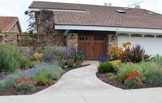 I love this drought-tolerate, native-plant landscaping -- so much better than lawns! Perfect for Colorado.