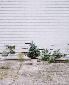 PHOTOGRAPHY BY CLEMENS FANTUR