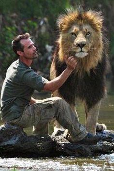 Kevin Richardson, zoologiste sud africain travaille en Afrique du Sud au contact des animaux de la savane, notamment des lions. Kevin Richardson, Big Cats, Cool Cats, Cats And Kittens, Beautiful Cats, Animals Beautiful, Animals And Pets, Cute Animals, Image Chat