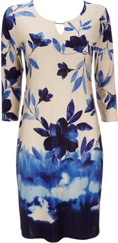 Wallis Blue Floral Print Dress