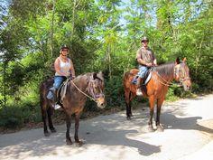 Discovering Corfu on Horseback