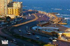 Alex.egypt