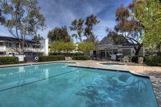 Pool at the Biltmore