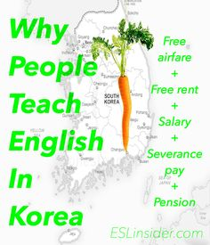 Why people teach English in Korea. They teach there because there's a tasty looking carrot there that even beginners can munch on. It includes free airfare, free rent, a good salary, severance pay and a pension for some.