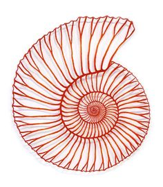 Scherenschnitt, Silhouetten, Plotter Meredith Woolnough, Red Ammonite, embroidery thread and p Paper Embroidery, Learn Embroidery, Embroidery Patterns, Machine Embroidery, Doily Patterns, Dress Patterns, Tatting Patterns, Embroidery Stitches, Paperclay