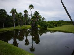 Wide shot of the lake. Panasonic G5, Olympus 15mm body cap lens.
