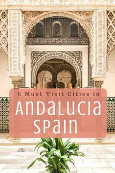 Tour of Andalucia Spain: 6 Must Visit Cities in Andalucia Spain. It's full of rolling mountains, valleys, beautiful coastline, and national parks. It's a must visit if you head to Spain! This post will share how to have the perfect tour of Andalucia at your own pace. It's full of historic cities, charming villages, and beautiful nature. I spent almost a month visiting this region - #andalucia #spaintravel