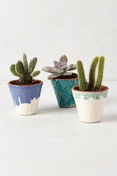 Handpainted Windowsill Pot#Anthropologie #Pintowin Outdoor decorating ideas Bright colors and calming neutrals Red, Orange, Blue, Green, Yellow, White & Grey