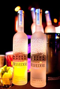 Belvedere Vodka Bottle..OH YEAH THATS THE STUFF HIT ME WITH ONE..HAHA