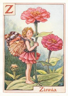Antique Alphabet Flower Fairy Print, the Zinnia, Antique Print, 1930's
