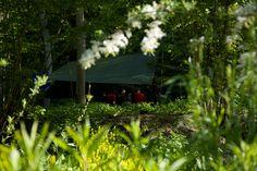 Explore, Flowers, Plants, Passion, Outdoor, Outdoors, Florals, Exploring, Planters