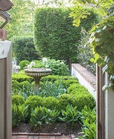 plan for the front garden - Miss Mustard Seed Boxwood Landscaping, Boxwood Garden, Front Yard Landscaping, Garden Posts, Side Garden, Garden Beds, Small Front Gardens, Garden Features, White Gardens