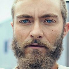21 Best Blonde Beards images | Beard without moustache, Beards, Full ...
