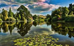 Pond in the castle garden