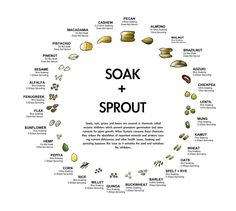 Handy chart of soak and sprout times