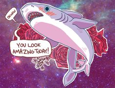 it's always nice to have a shark compliment you