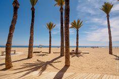 Poniente Palmas II : Playa Poniente, Benidorm @ 2016.04.16 14.18