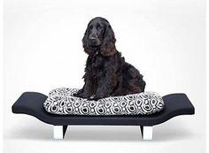 Designer bed for spoiled Cocker Spaniels!