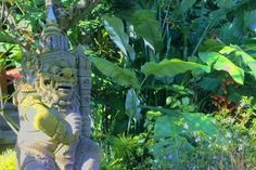 Green is the prime color of the Ubud Cottages Malang, and that from which its loveliness arise