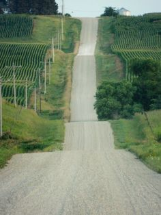 When I first saw this pic, I knew I was in Iowa. Beautiful Roads, Beautiful World, Beautiful Places, Spencer Iowa, Storm Lake, Dubuque Iowa, Cedar Falls, Iowa Hawkeyes, Back Road