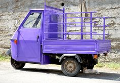 purple piaggio apecar with cat