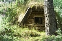 """In the middle of the Swedish wilderness  Experience the genuine nature and the silence of the forest in Sweden's """"wildest"""" hostel Jägarstugan, located in Ovansjö Kronopark/Gästrikland. Here, guests have the opportunity to stay overnight in a primitive coaler's hut, """"Kolarkoja"""". Jägarstugan Wilderness Lodge - Gränsland"""