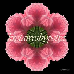 Mandala ''Mohn rosa'' kreativesbypetra #mandala #mandalaart #mandalastyle #inspiration #innereruhe #mohn #mohnblume #poppy Mandala Art, Petra, Poppy, Inspiration, Style, Mandalas, Mosaics, Canvas, Schmuck