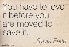 -Sylvia Earle  You have to love it before you are moved to save it.