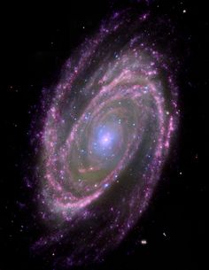 Black Holes Have Simple Feeding Habits This composite NASA image of the spiral galaxy M81, located about 12 million light years away, includes X-ray data from the Chandra X-ray Observatory (blue), optical data from the Hubble Space Telescope (green), infrared data from the Spitzer Space Telescope (pink) and ultraviolet data from GALEX (purple). The inset shows a close-up of the Chandra image.