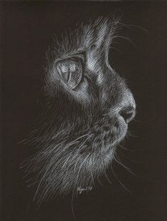 white pencil on black paper sketch, OC - Imgur