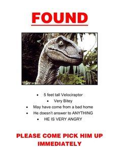 Velociraptor?