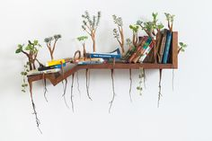 Household Objects Overgrown With Sprouted Wooden Limbs by Camille Kachani | Colossal