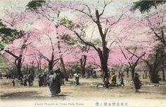 Beautiful hand painted Japanese postcard