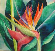 Tropical Flower Painting Class, Jo Kopp's painting Tropical Art, Tropical Flowers, Watercolor Pencils, Watercolour, Coloured Pencils, Fruit Art, Orange Flowers, Flower Prints, Paradise