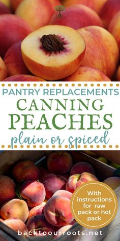 BEGINNER'S GUIDE TO CANNING PEACHES: Canning peaches is one of the basics for your canning pantry. Peach halves, slices, or in a spiced syrup; I'll walk you through it all.
