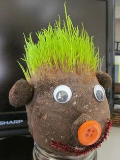 the DIY chia pet... the kid in me just squealed with joy :o)
