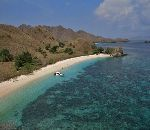 Wonderful Indonesia - Komodo National Park: Into The Heart of The Dragons