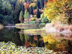 Trentino  598687_477554715600428_1957043015_n.jpg 960×721 pixel