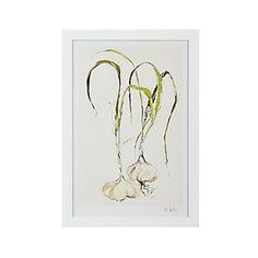 Fresh Garlic Print I Crate and Barrel