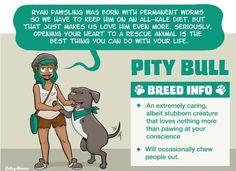 7 Breeds of Dog People